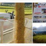 スキー仲間の作る南魚沼・特別栽培米コシヒカリ